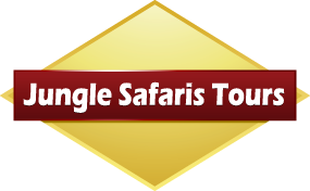 JUNGLE SAFARIS TOURS