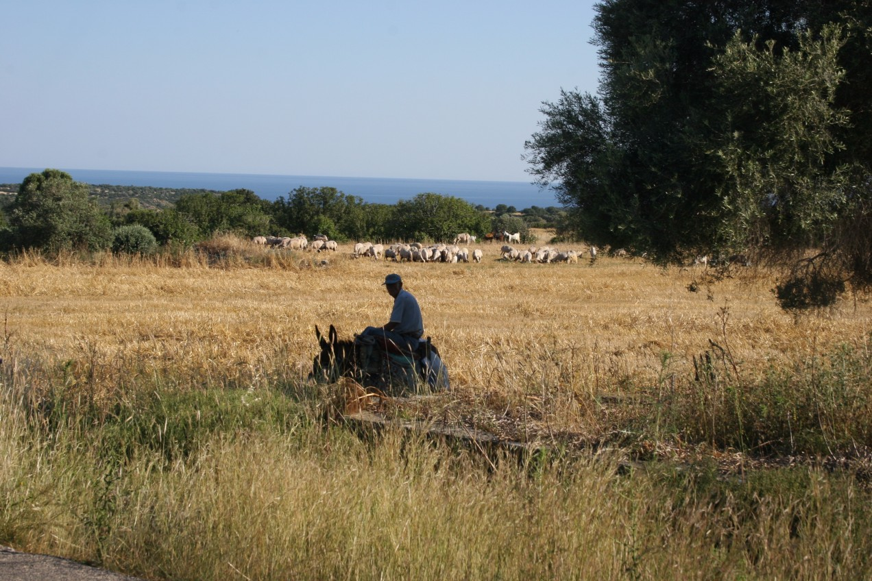 Self Guided Walking in North Cyprus