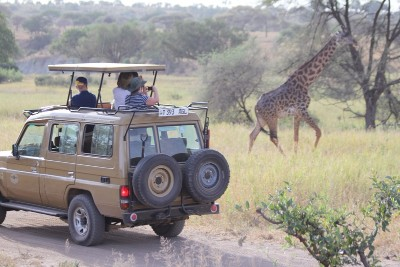 Tanzania wildlife safaris 7 days tours Africa