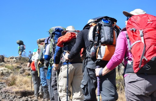 Climb kilimanjaro with Chelsea Tours in Tanzania