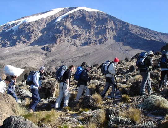 Climbing kilimanjaro machame route booking tour