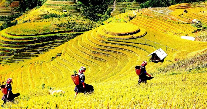 Best of Northern Vietnam 6 days by Bus Itinerary
